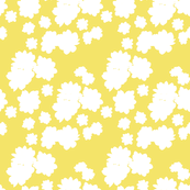 Daisies blender