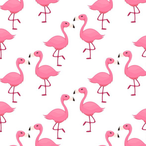 Pink flamingo cute birds