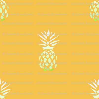 Ananas-geel-2_preview