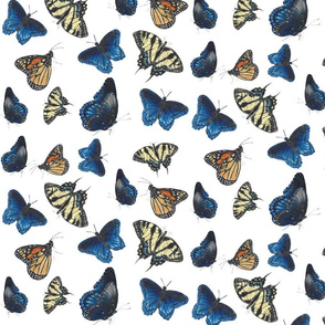 Butterfly Fabric 3