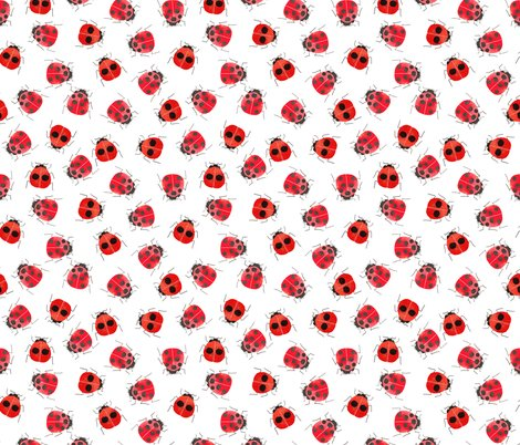 Rrladybirds_new_copy_shop_preview
