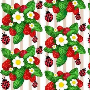 Summer Strawberries & Miss Ladybug on stripe  med