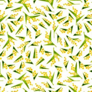 Cute watercolor mimosa geometric random.