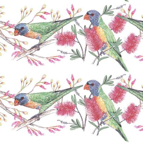 Rainbow Lorikeets Stripe fabric by eclectic_house on Spoonflower - custom fabric