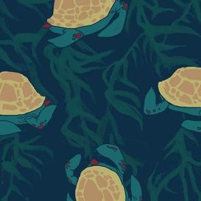 turtle tap