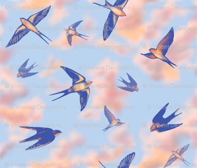 Sunset Swallows