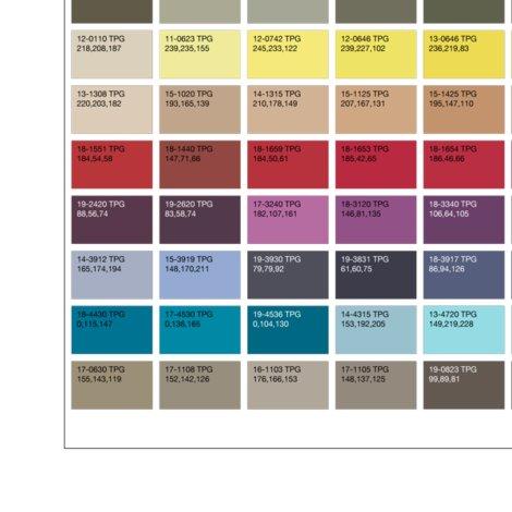 Pantone_fashion_home___interiors_color_guide_rgb_shop_preview