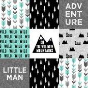 Rcustom-adventure-little-man-02_shop_thumb
