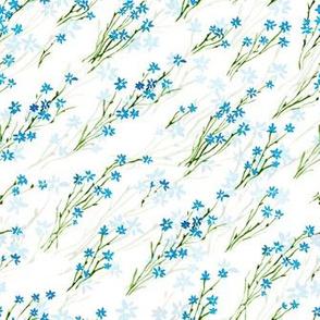 Watercolor cornflowers diagonal layered