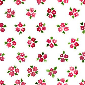 Calico watercolor red forget me not  order