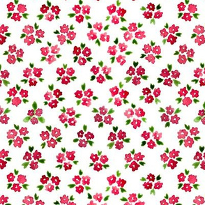Calico watercolor red forget me not  dense