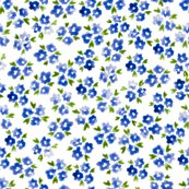 R04-forget-me-not-04_shop_thumb