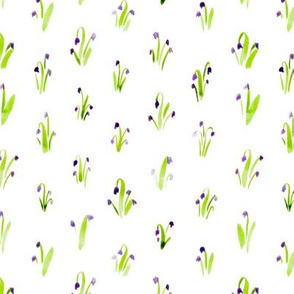 Violet watercolor bluebell dense