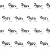 cavalier spaniel fabric, dog fabric, dogs fabric, pet fabric, - black and white