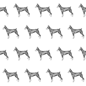 doberman dog fabric, dog fabric, dogs fabric, pet fabric, - black and white