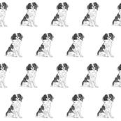 japanese chin fabric, dog fabric, dogs fabric, pet fabric, - black and white