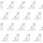 labrador retriever fabric, dog fabric, dogs fabric, pet fabric, - black and white