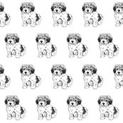 zuchon fabric - dog fabric, dogs fabric, pet fabric, - black and white