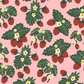 Simple Strawberry Patch