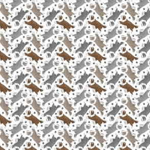 Tiny Trotting Bearded Collies and paw prints - white
