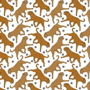 Trotting Dogue de Bordeax and paw prints - white