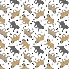 Trotting Pugs and paw prints - white