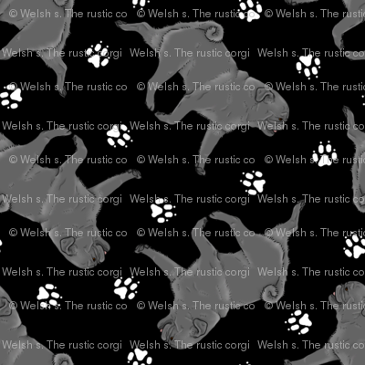 Trotting black Pugs and paw prints - tiny black