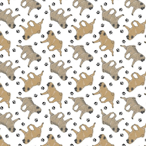Trotting fawn Pugs and paw prints - white