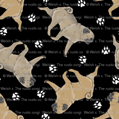 Trotting fawn Pugs and paw prints - black