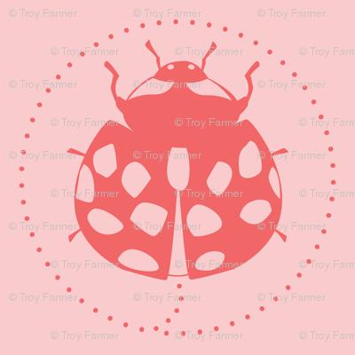 ladybug transistor