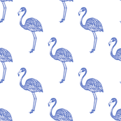 American Flamingo (blue)