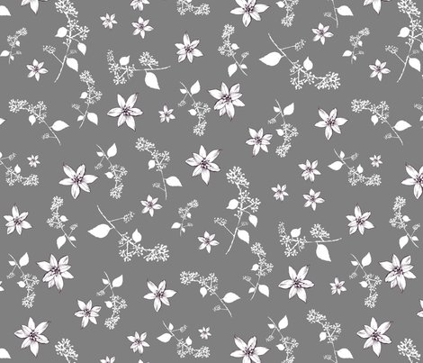 Star-of-bethlehem-on-grey_shop_preview