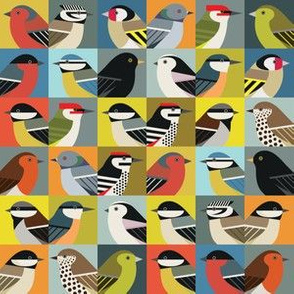 Multibirds