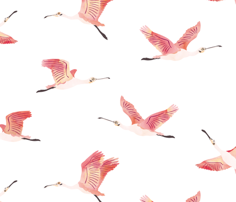 Roseate Spoonbills on white fabric by revista on Spoonflower - custom fabric