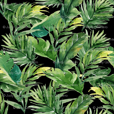 """8"""" Leaves with Black Background"""
