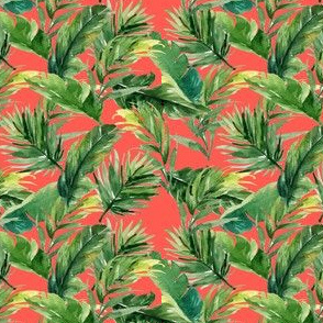 "4"" Leaves with Bright Coral Background"
