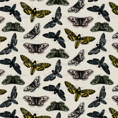 scattered moths grey no logo