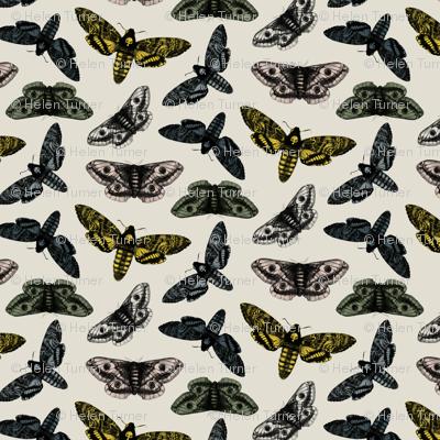 Rrrscattered-moths-grey-no-logo_preview