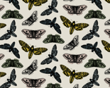 Rrrscattered-moths-grey-no-logo_thumb