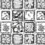 sketch series  square