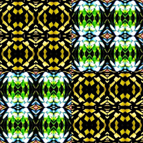 Kaleidoscope Cactus