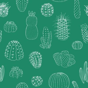 Cactuses seamless pattern, hand drawn vector illustration. outline sketch chalk style. Succulent collection.