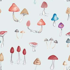 mushrooms blau