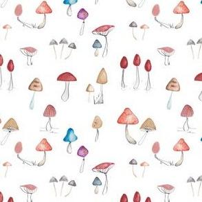 mushrooms white