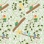 Rrrcanaries_and_lovebirds_shop_thumb