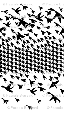 Black White Houndstooth birds