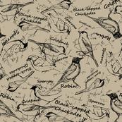 BirdNotes-02
