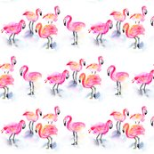Rrrkendra_shedenhelm_watercolor_flamingos_group_forpattern_shop_thumb
