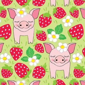 pigs-in-a-red-strawberry-patch