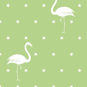 flamingos and stars on light green - large